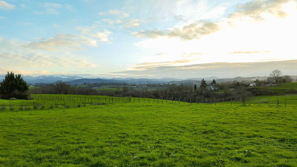 vue et paysage de campagne