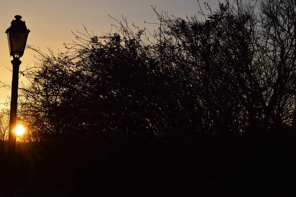paysage de campagne au crépuscule